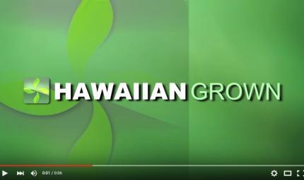 Hawaiian-Grown-TV-Billboard-with-Alpha-Channel-Wipe.jpg