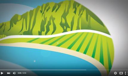 Hawaiian-Grown-TV-Show-Opener.jpg