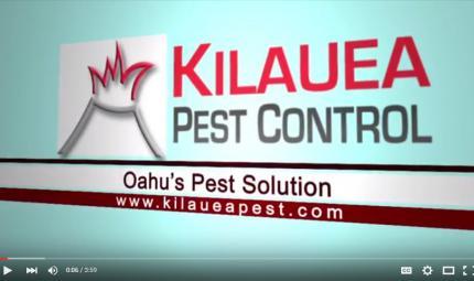 Kilauea-Pest-Control-Business-Philosophy.jpg
