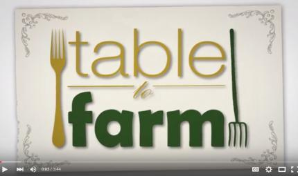Sheraton-Waikiki-Table-To-Farm-Feature.jpg