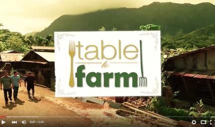 Sheraton-Waikiki-Table-To-Farm-Highlights.jpg