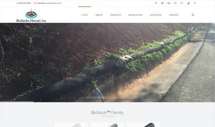 biosockshawaii-thumbnail.jpg